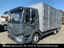 Mercedes Viehtransporter