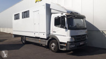camion Mercedes Atego 1024