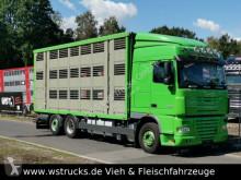 camion DAF XF 105/460 SC Menke 3 Stock Hubdach