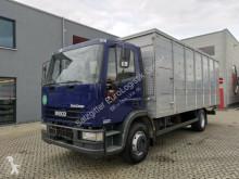 camião transporte de cavalos Iveco