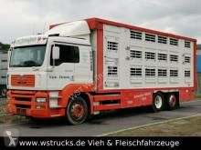 MAN horse truck