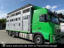 camion furgonetă transport cai second-hand