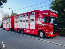 Scania cattle trailer truck