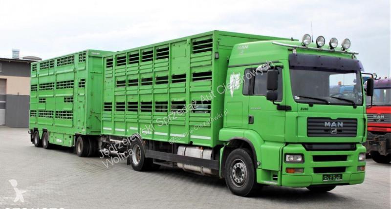 Zobaczyć zdjęcia Ciężarówka z przyczepą MAN MAN 18.460 zabudowa KA BA + Pezzaioli RBA31F / do przewozu bydła i trzody /