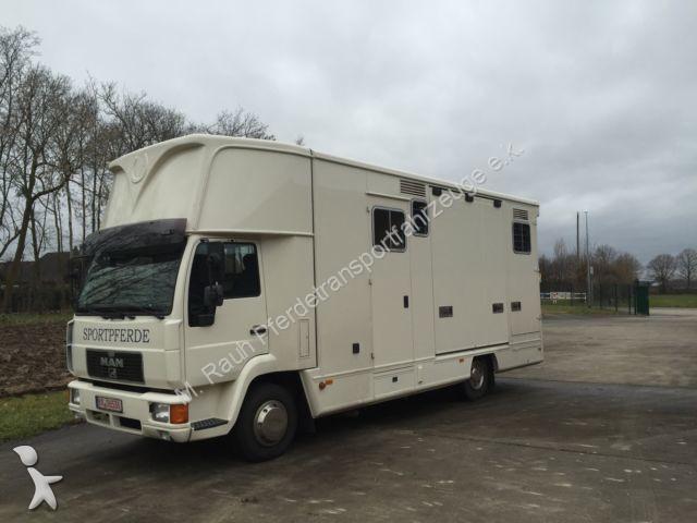 van chevaux occasion man nc pferdetransporter annonce n 1263628. Black Bedroom Furniture Sets. Home Design Ideas