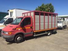 transporte para ganado Iveco