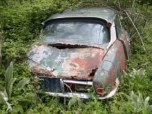 Citroën Citroen ds
