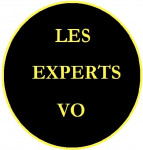 LES EXPERTS VO